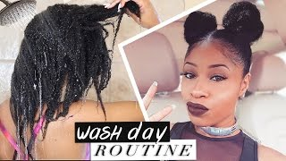 getlinkyoutube.com-Natural Hair ➟ Best Damn WASH DAY ROUTINE! (start to finish)