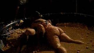 getlinkyoutube.com-Girls jello wrestling at Mondopalooza 2010 Part 2