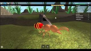 getlinkyoutube.com-Ant Simulator With New Code !