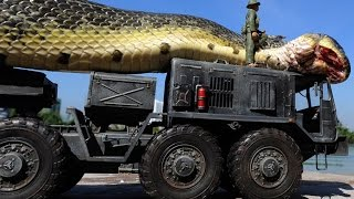 getlinkyoutube.com-Giant Snake Caught in Red Sea