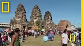 getlinkyoutube.com-Lopburi Monkey Festival | National Geographic