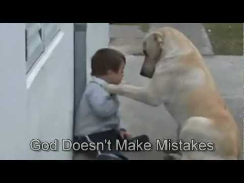 Sweet Mama dog interacting with a Beautiful Downs Syndrom Child.