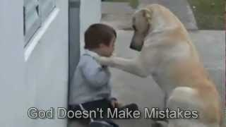 getlinkyoutube.com-Sweet Mama Dog Interacting with a Beautiful Child with Down Syndrome. From Jim Stenson.