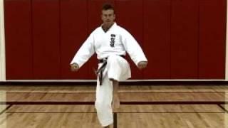 Basic Karate Kicks - Maegeri