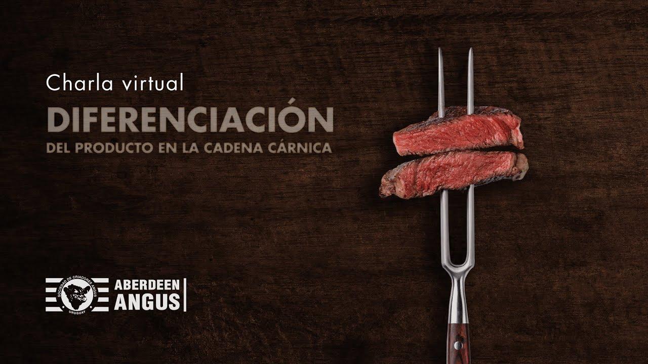 Video Galeria Angus Uruguay