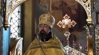 Проповедь архимандрита Филиппа в Неделю 7-ю по Пятидесятнице 2015