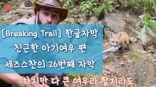 [Breaking Trail 한글자막] 친근한 아기여우!
