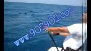 getlinkyoutube.com-شف الصيد بطعم الصناعي