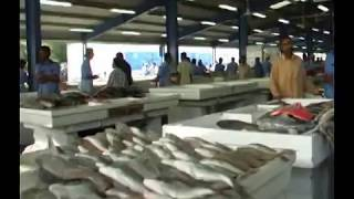 getlinkyoutube.com-DUBAI FISH MARKET 3