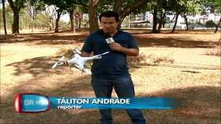 Drone, O que é?