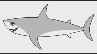 getlinkyoutube.com-สอนวาดรูป ปลาฉลาม ด้วยโปรแกรม MS PAINT (เส้นโค้ง)