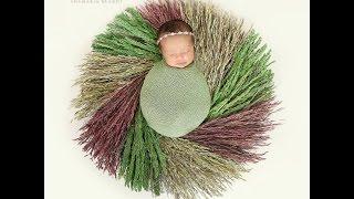 getlinkyoutube.com-Family newborn studio session with teeny tiny baby girl