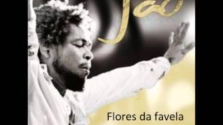 Flores da favela - Jauperi