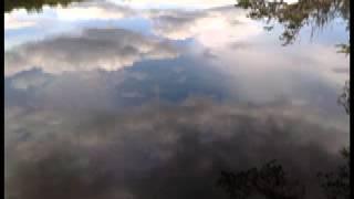 getlinkyoutube.com-Adyashanti - Sensing what you are