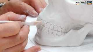 getlinkyoutube.com-Art Lesson: How to make a simple Skull using Air Hardening Modelling Clay