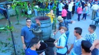getlinkyoutube.com-Festa della Vendemmia in Pugliano di Teano (CE)