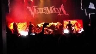 getlinkyoutube.com-Veil Of Maya Live Summer Slaughter