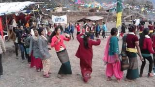 getlinkyoutube.com-tamang selo dance dolkha jhyaku sonam losar  2016