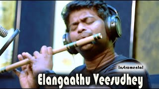 Elangathu Veesuthe | Pithamagan | Ilayaraja song | Flute Cover | Ishaan Dev width=