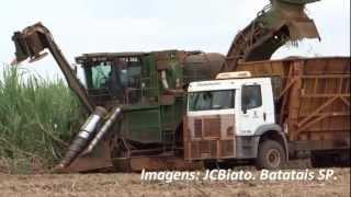 getlinkyoutube.com-Corte Mecanizado da Cana Colhedeira Transbordo e Carregamento da cana Picada 24 11 2012