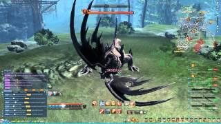 Blade & Soul NA CBT 1 Blade Master Tanking Blackwyrm