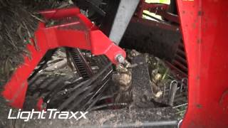 Agrifac Holmer Exxact LightTraxx sugar beet harvester - Compact, light and manoeuvrable