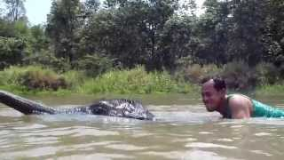 Swimming With Baby Elephant