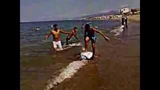 getlinkyoutube.com-شباب الجلــفة على شاطــئ ولايــة جيجــل 2013
