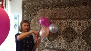 День Рождение Беллочки)))😂😘😍😇😋