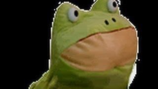 Frog.mp4