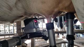 getlinkyoutube.com-vms delaval