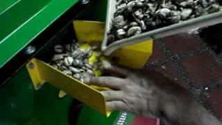 Descascaradora de Higuerilla ,Jatropha, sacha inchi I (Limpiando semilla)