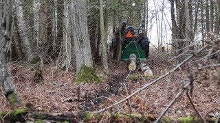 getlinkyoutube.com-Woodland Mills FW66 Forestry Winch