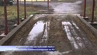 getlinkyoutube.com-Кроличьи фермы в Ростовской области