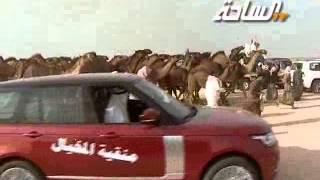 مزاين الكويت 2014   مخربات   مسيرة منقية الشيخ / حزام بن سلطان بن حثلين