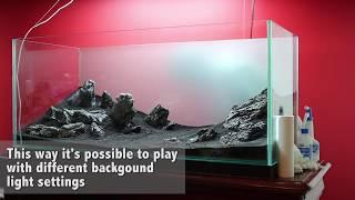 getlinkyoutube.com-Green&Grey Aquarium Step-by-Step (Day 0) ADA Style