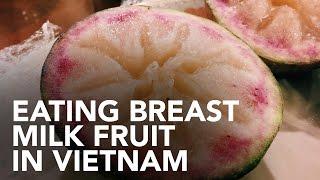 Eating breast milk fruit in Vietnam