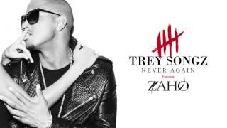 Trey Songz - Never Again (ft. Zaho)