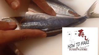 getlinkyoutube.com-How to clean fish(horse mackerel)STEP1 sushi.Japanese sushi chef of professional