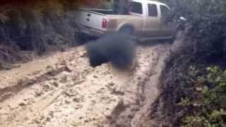 getlinkyoutube.com-Big trucks mudding triple D
