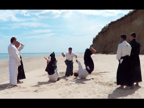 Aikido Escapes Several Opponents