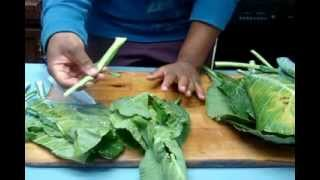 Prepare Collard Greens for Cooking:  Washing, Cleaning, and cutting