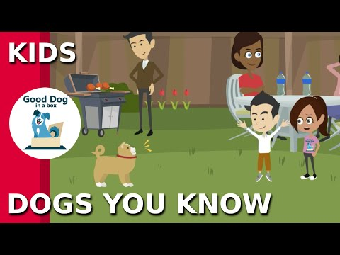 Kids Dogs You Know