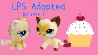 "LPS: Adopted) Episode 3: ""Baking battles"""