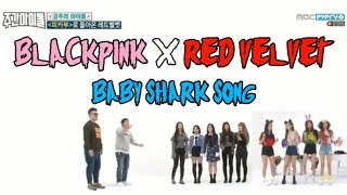BABY SHARK SONG BLACKPINK X RED VELVET