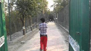 "A short trip to Sundarban with ""Sundarban Tiger Safari"" - Part 1"