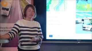 Almedalen - Drivkrafter för framtidens drivmedel - Carina Aschan