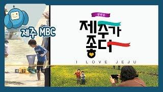 생방송 제주가 좋다 (12월 27일 방송) 다시보기