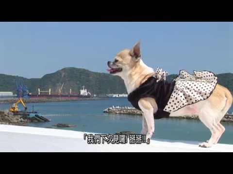 2016「蘇澳微旅行」微電影佳作 KiyoshiStudio《蘇澳遊山玩水慢活之旅》