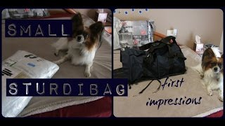 Sturdibag (small) Unpackaging and first impressions